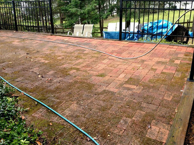 patio paver wash moss covered bricks - Specialty Gallery